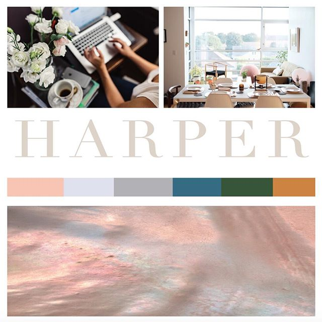 This week we're shining our #moodboardmonday over to our Harper Shopify Theme. Soft but strong, chic but feminine, Harper is perfect for those with high-end aesthetics and is available over on our website! #shopify #shopifyexperts #shopifyhandmade #shopifypics #shopifystore #risingtidesociety #creativepreneur #creativebiz #mycreativebiz #webdesign #websitedesigner #branddesign #etsystore #etsyseller #etsysellersofinstagram #mompreneur #momtrepreneur #shopsmall #shoponline #smallbiz #smallbizlife #branding #branddesign