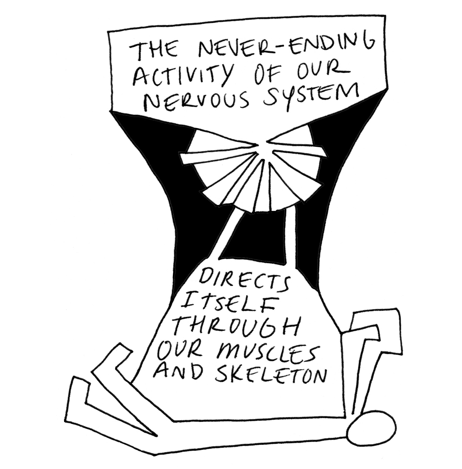 11 the neverending activity of our nervous system - C2 square.jpg
