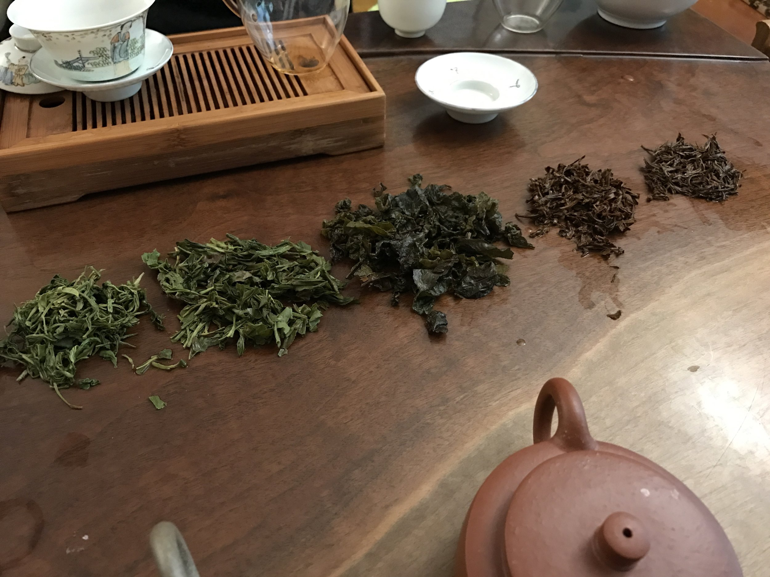 The leaves of most of the teas we tasted