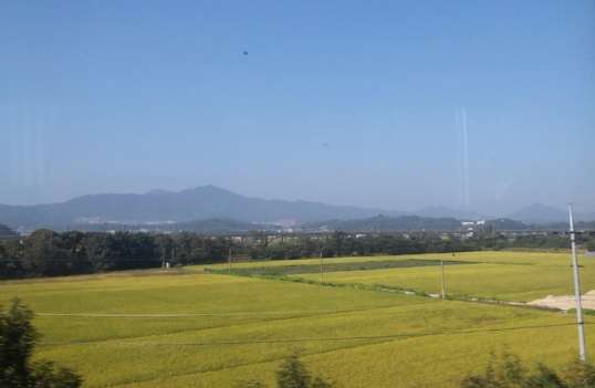 View from the train ride to Seoul