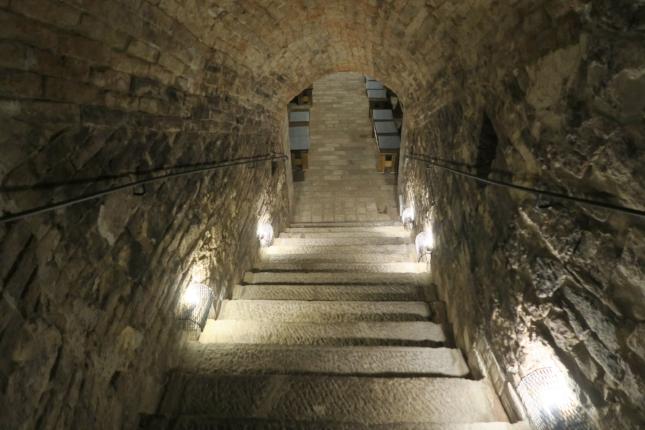 Wine cellar in Czech Republic