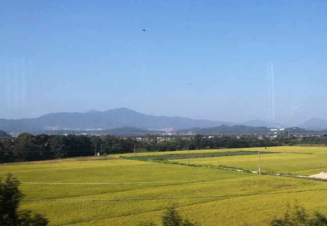 From the train to Seoul