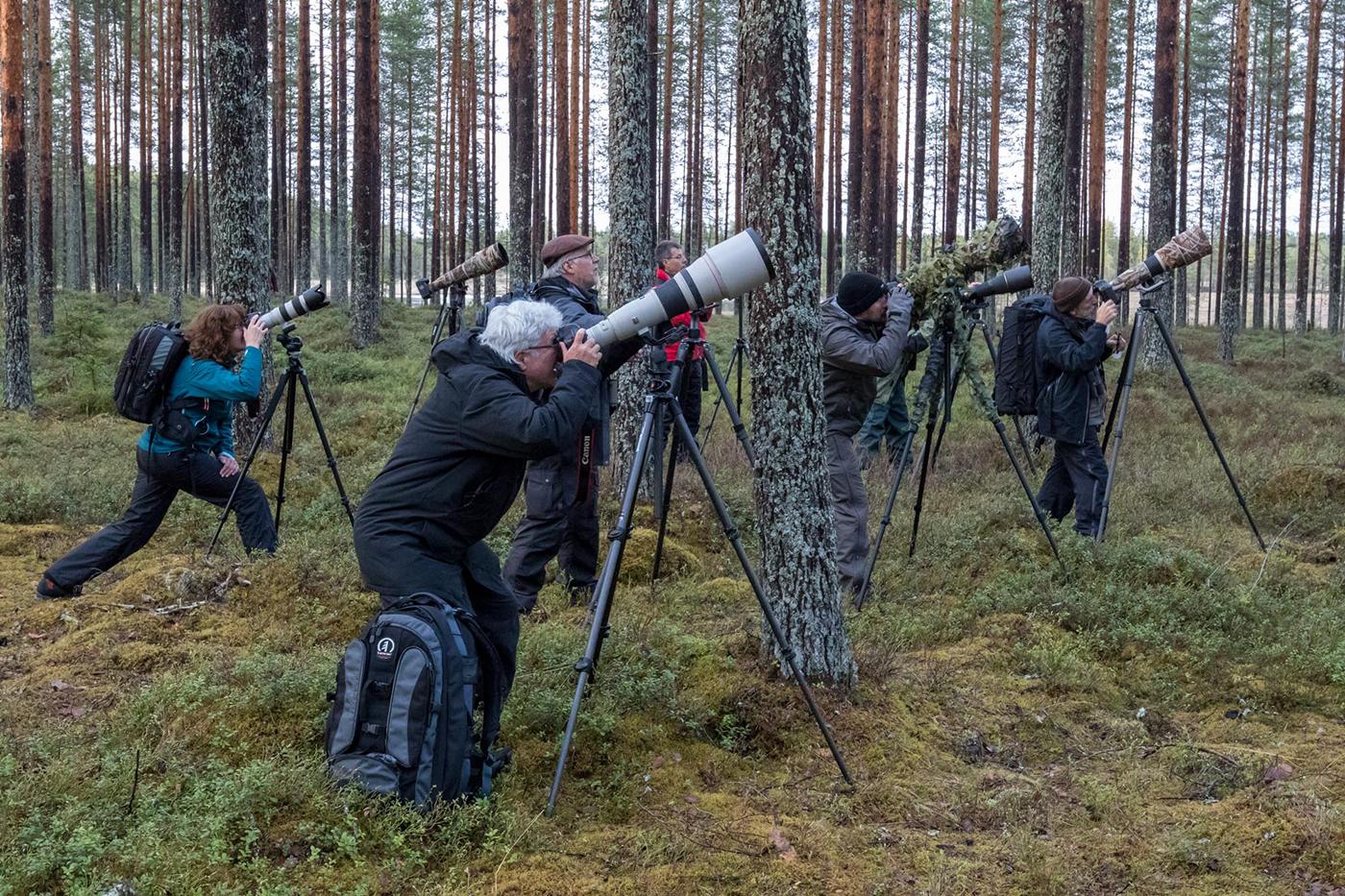 zb_Finnland_Fotoreise.jpg