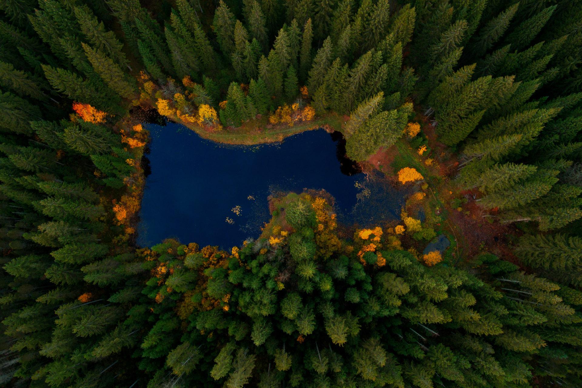 1_K5_Waldsee im Jura_klein.jpg