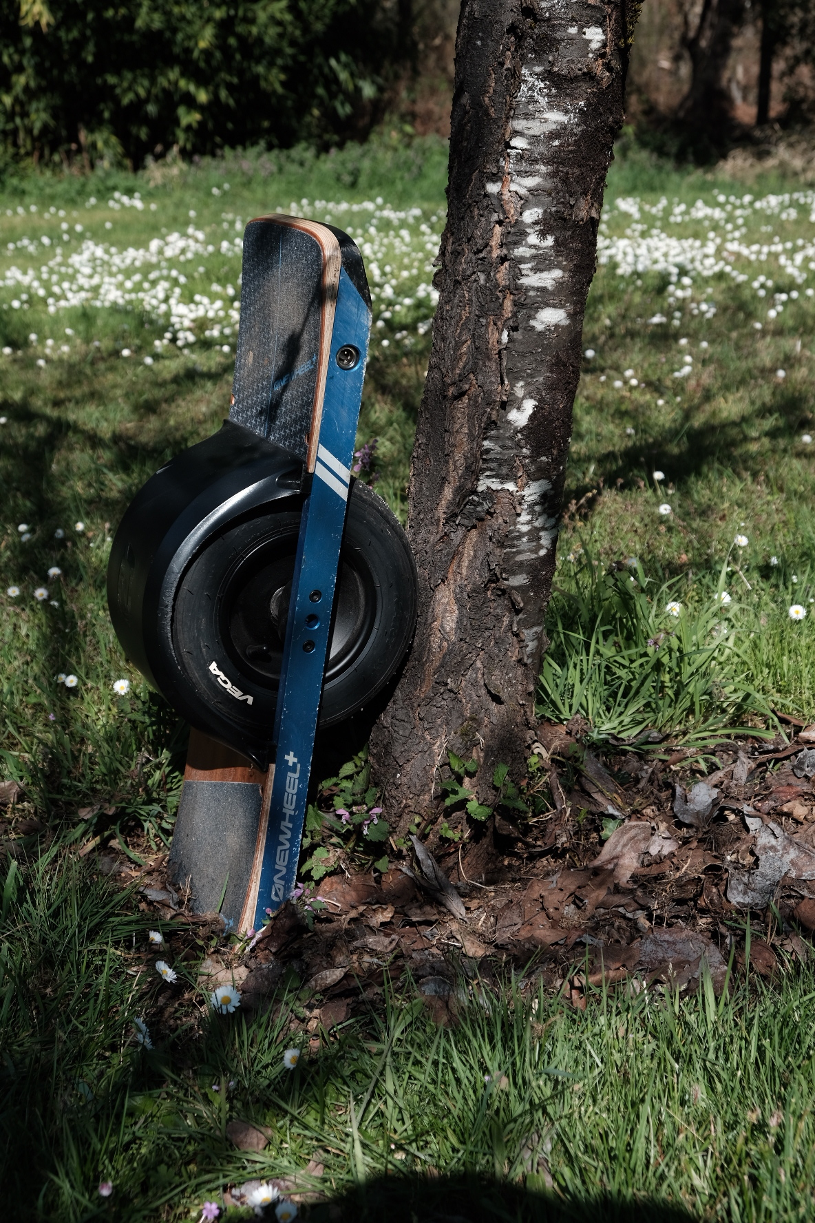 Onewheel 1