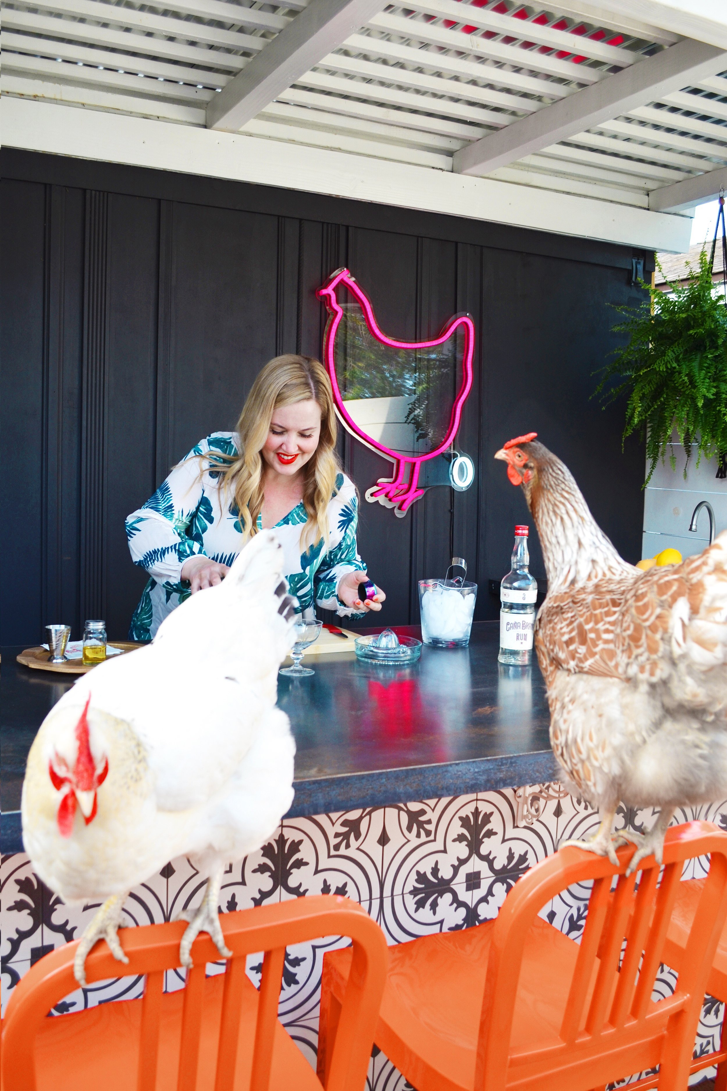 This is a Chicken Bar. - Don't overthink it, mmkay? It's an outdoor bar, adjacent to the chicken yard. Because this is our life. Click on images for more information and sources.