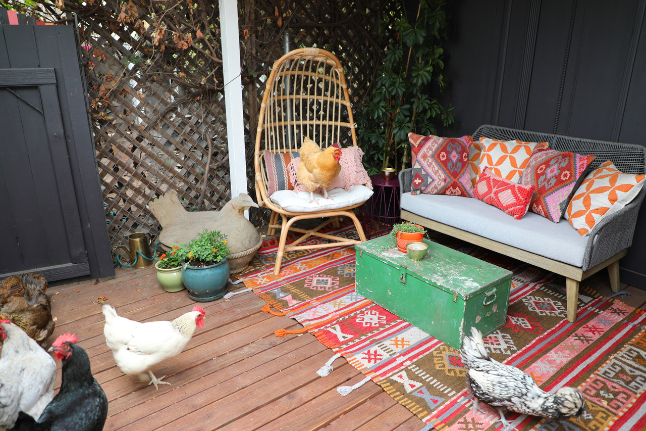 The Chicken Bar Lounge...