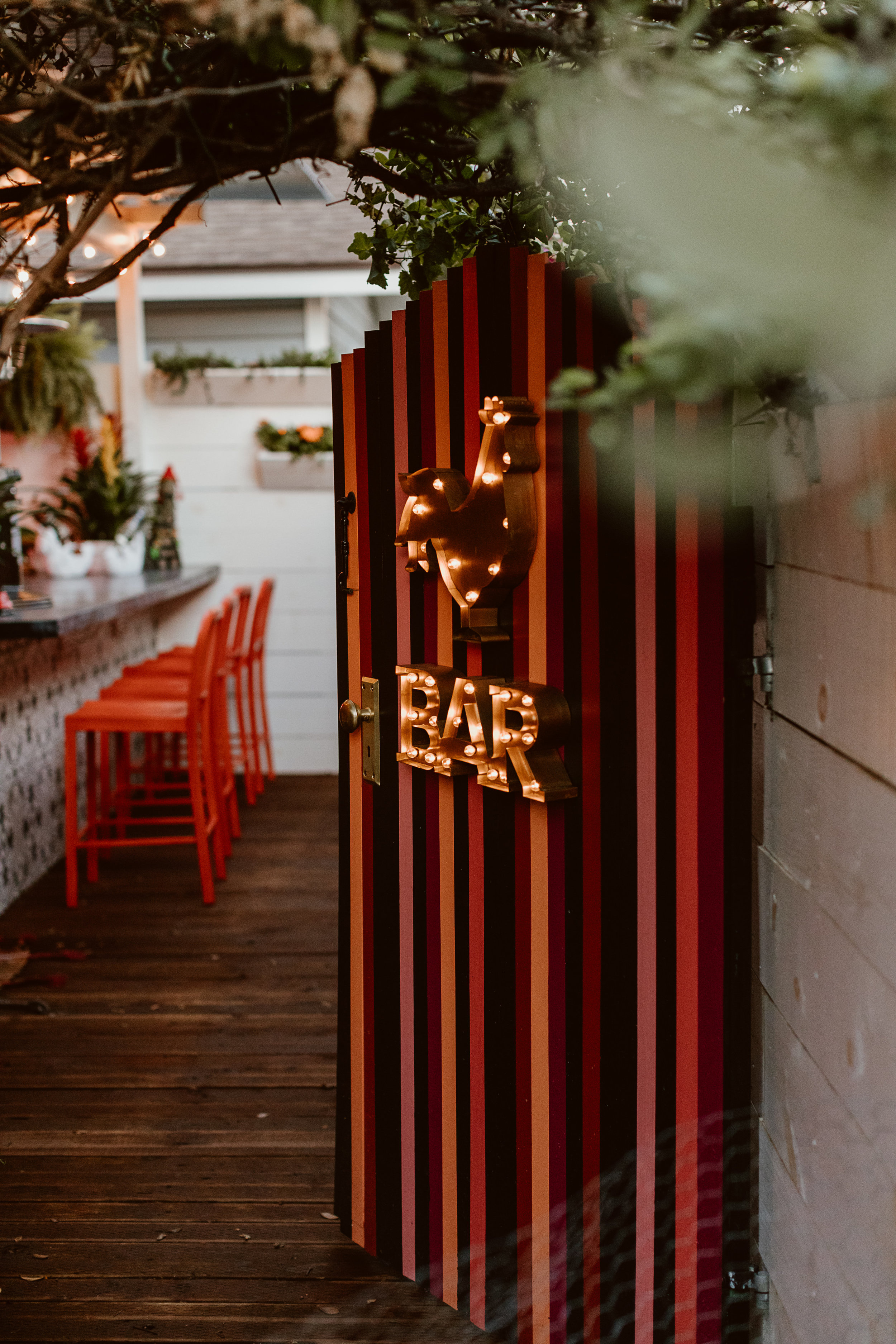 Holiday Tiki Party at the DWC Chicken Bar with Havana Club Rum | drinkingwithchickens.com