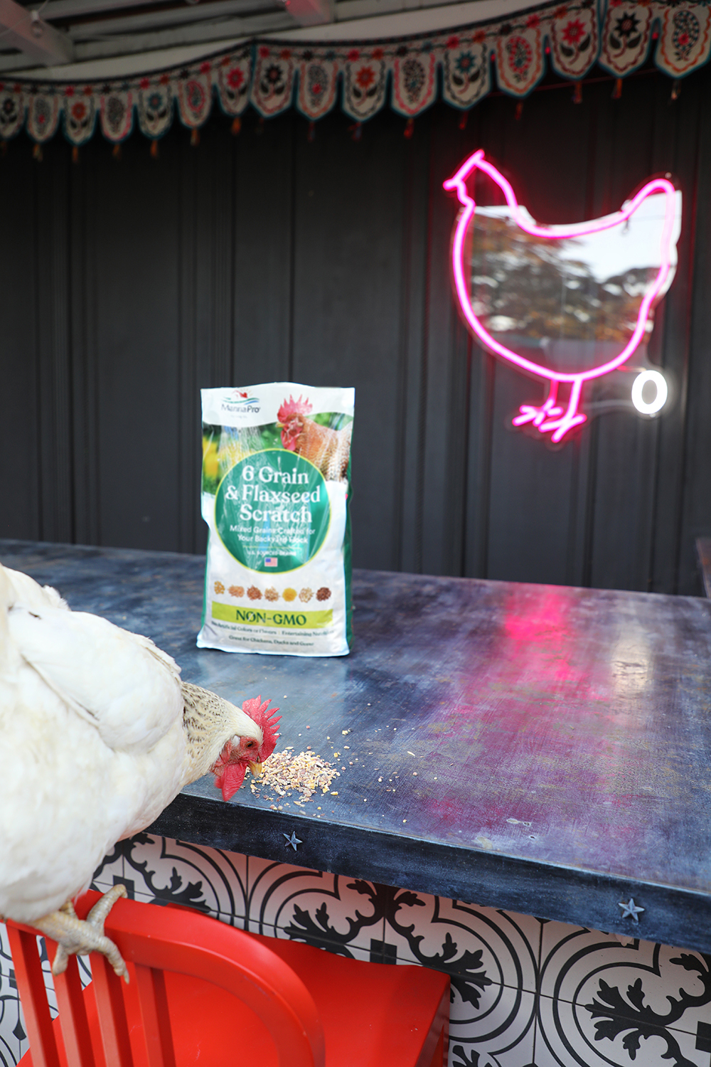 Happy hour treats at the Chicken Bar with Manna Pro | drinkingwithchickens.com #sponsored