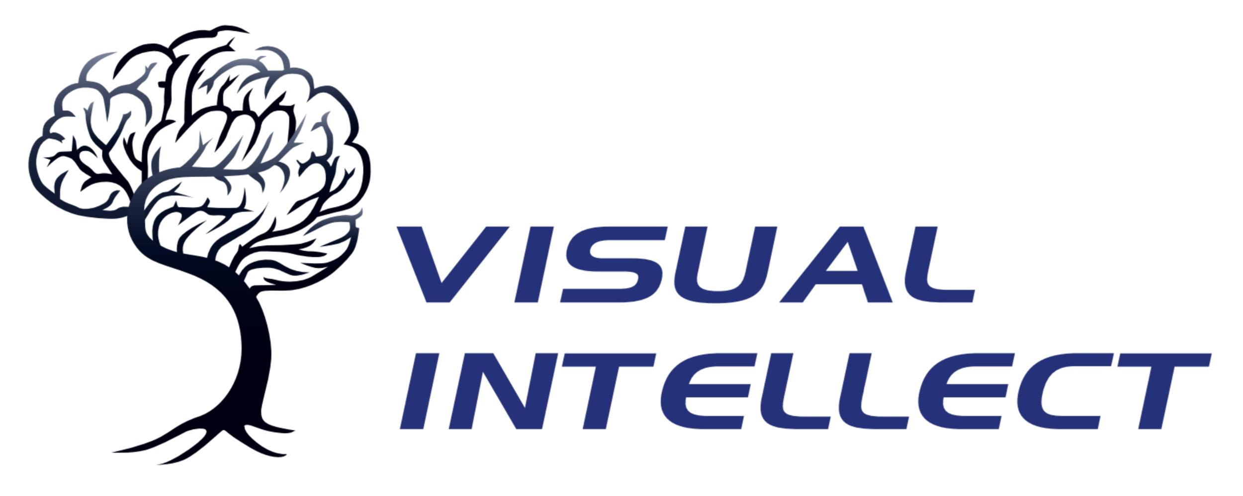 Visual Intellect
