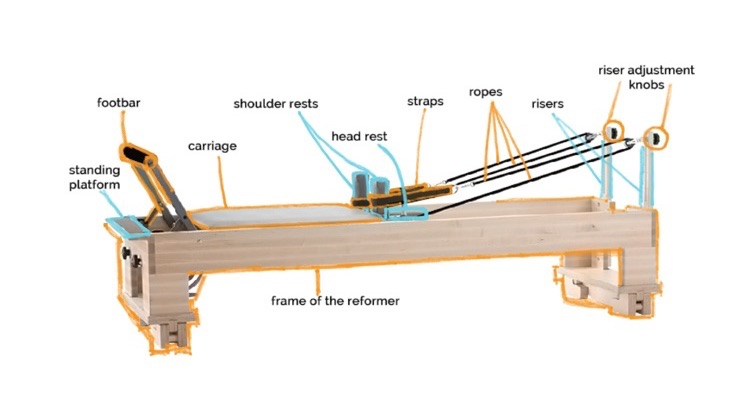 pilates studio reformer anatomy