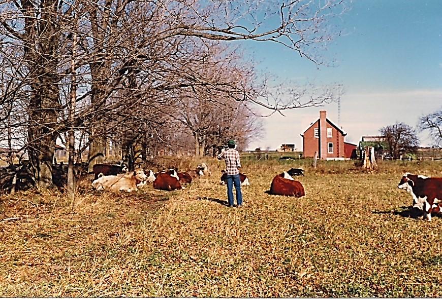 on the farm.jpg