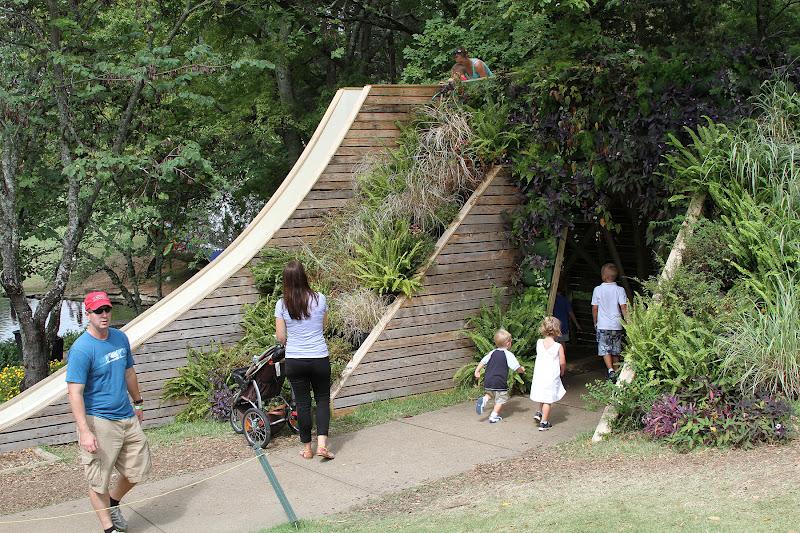 custom slide and developed green wall