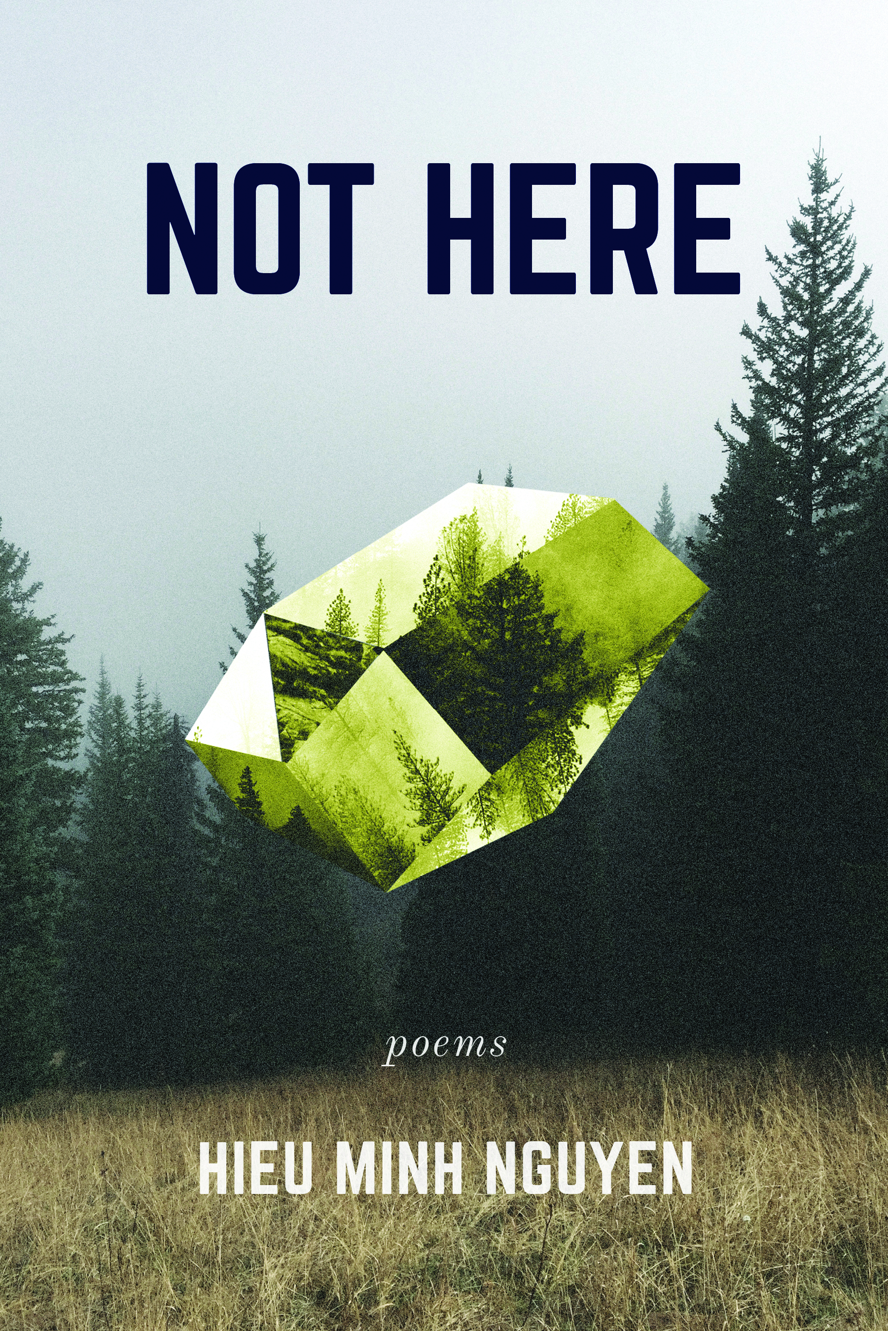 Not Here (Coffee House Press).jpg