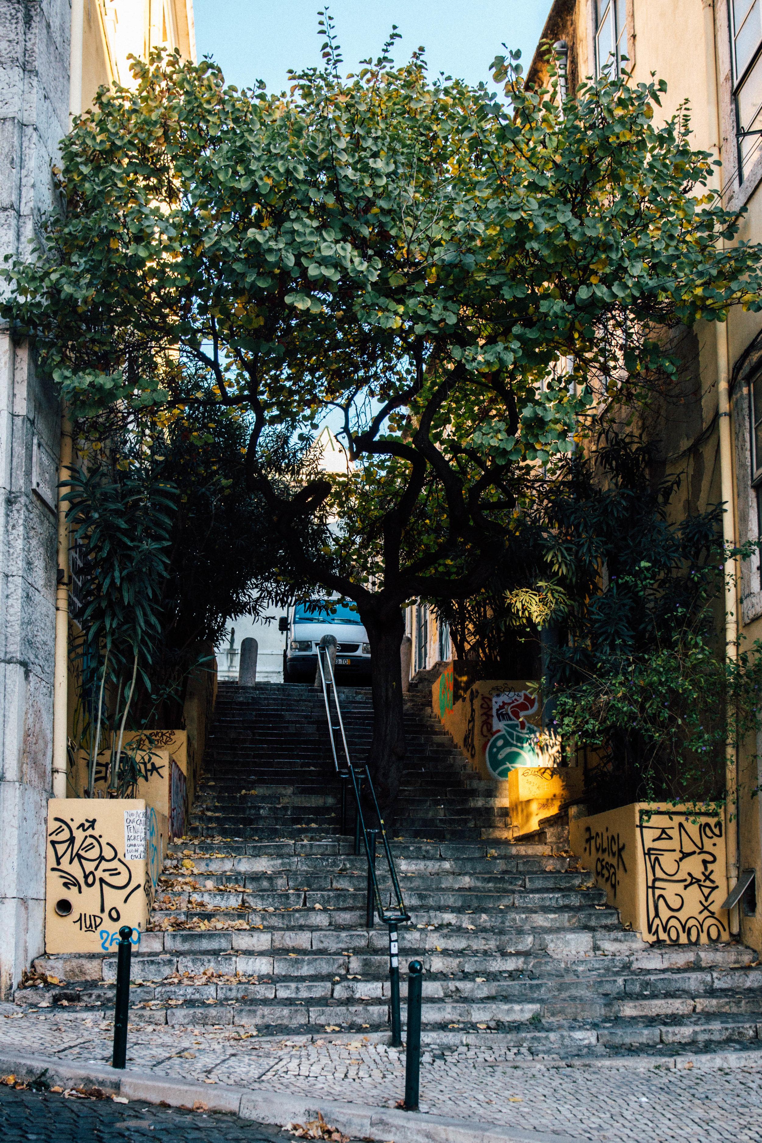 Lisboa by Jorge Güiro 60.jpg