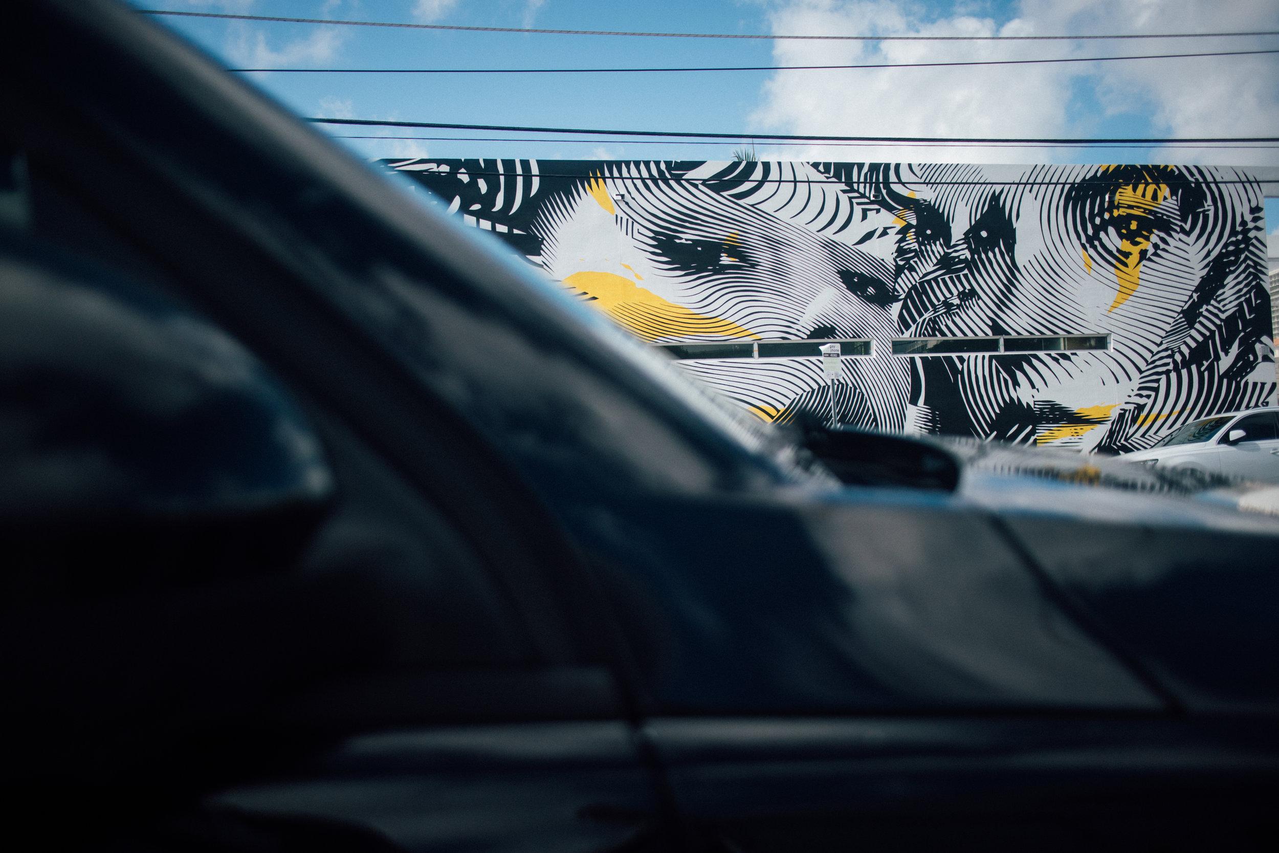 Miami by Jorge Guiro 4.jpg