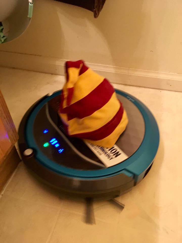 Dobby the house-elf-robot-vacuum.