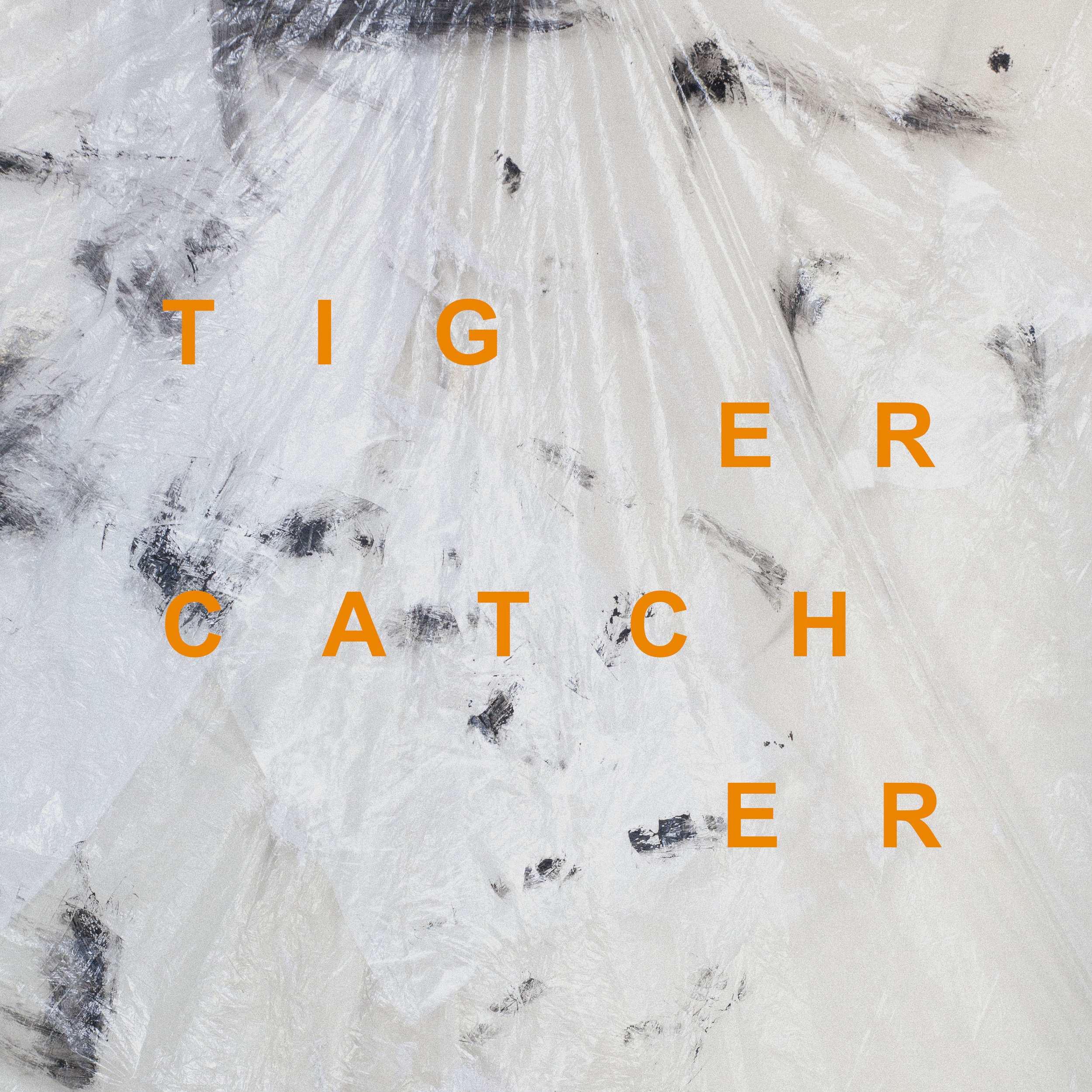 20171216_TigerCatcher_IG_INTRO.jpg