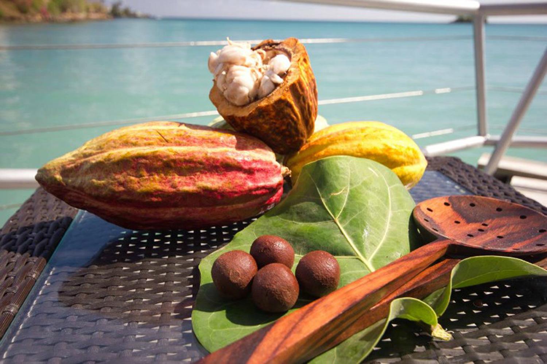 GrenadaChocolateFestival_CocoaBeans.jpg