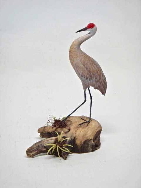 Sandhill Crane, Miniature Carved from solid piece of basswood, hand painted, vegetation brass