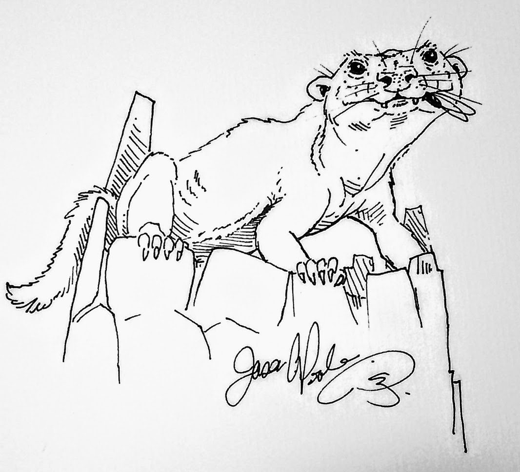 Didelphodon  . Image Credit: Wikipedia