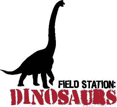 FSD_NEW_Logo_Brac.png