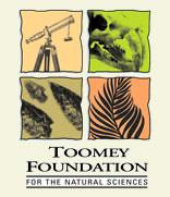 Toomey Foundation Logo.jpg