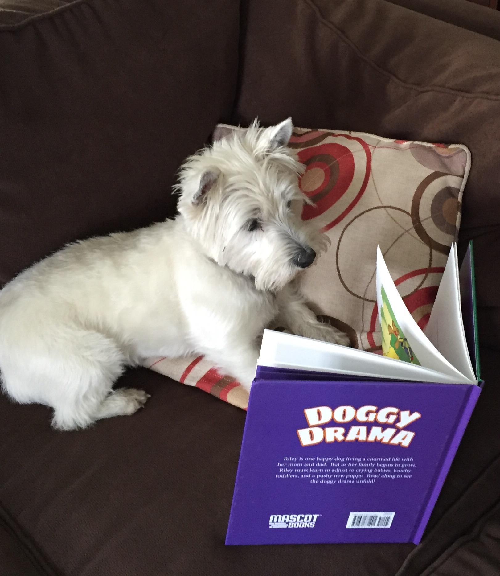 LucyBook.jpg
