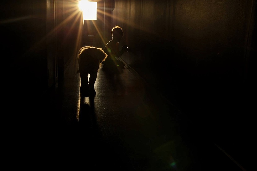 Interior photo showing sunset just lighting the edge of a boy and the fluffy ears of his puppy