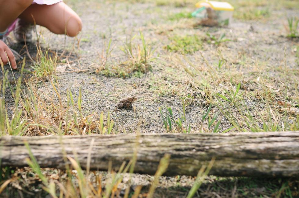 Ruby at the Farm- McKenzie Elizabeth Photography blog-17.jpg