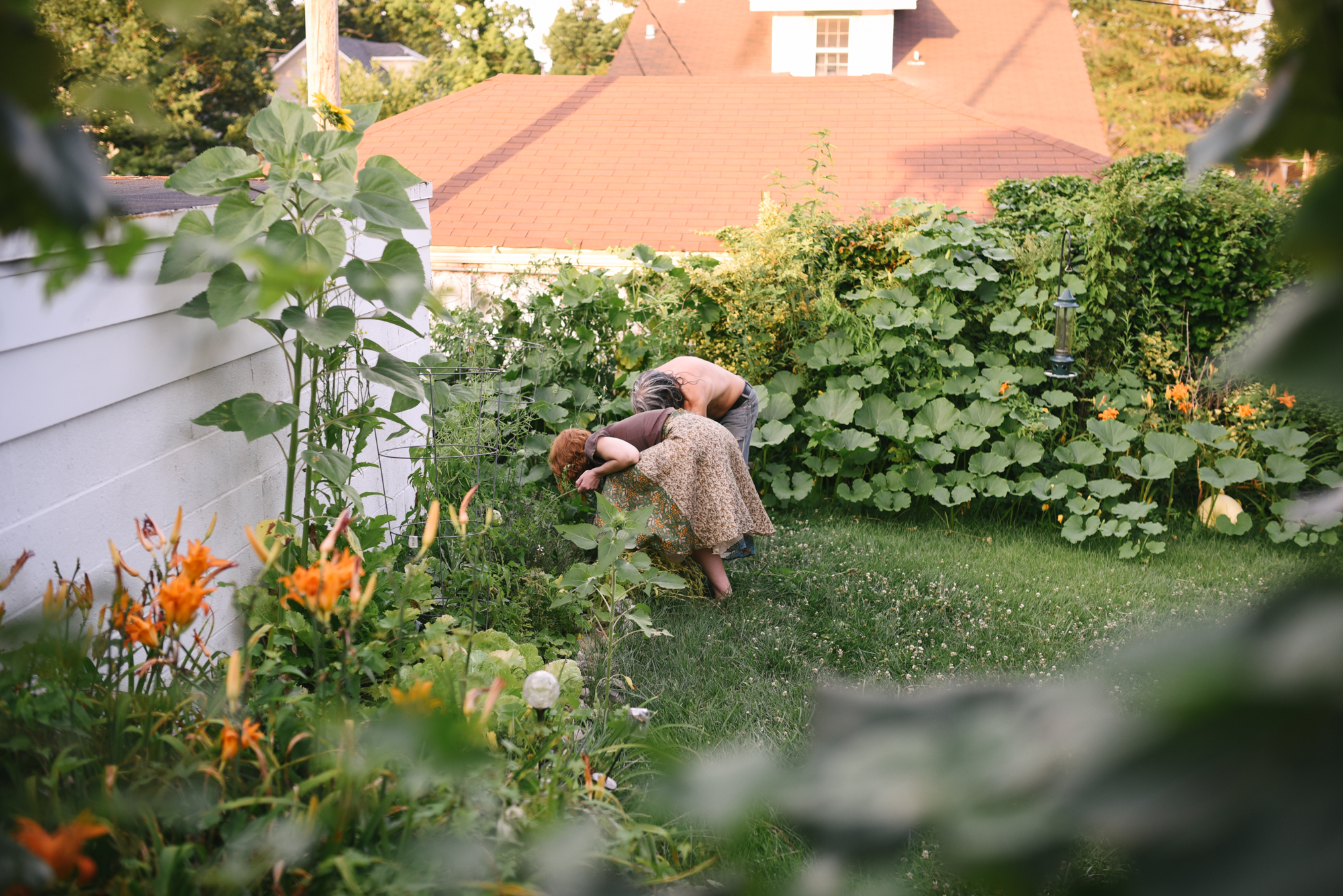 Ann & Brian's Garden Web (16 of 27).jpg