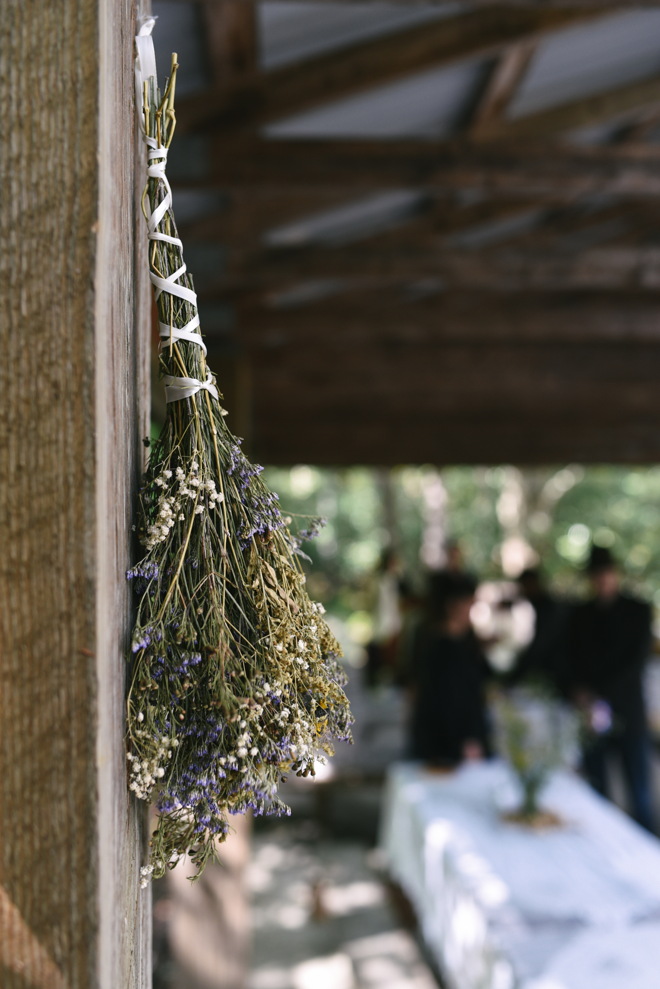 Mountain Wedding, Outdoors, Rustic, West Virginia, Maryland Wedding Photographer, DIY, Casual, Close up of dried flowers