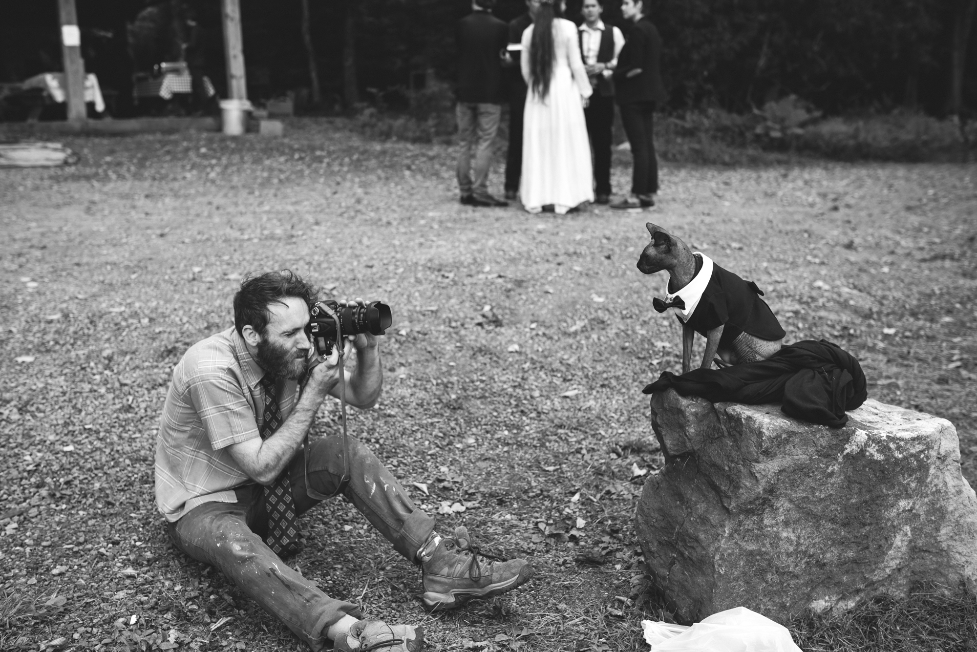 Mountain Wedding, Outdoors, Rustic, West Virginia, Maryland Wedding Photographer, DIY, Casual, Wedding Guests taking photo of cat in bowtie, Pets, Black and White Photo