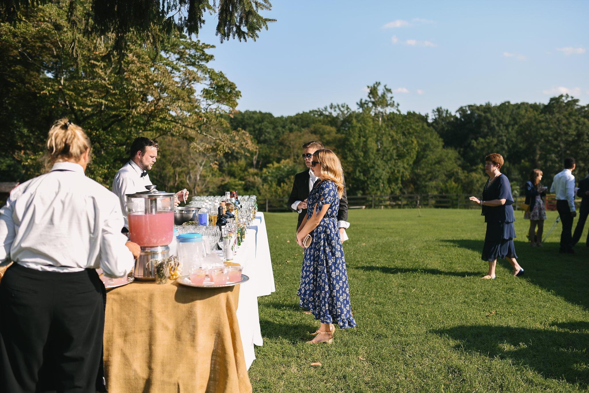 Maryland, Eastern Shore, Baltimore Wedding Photographer, Romantic, Boho, Backyard Wedding, Nature, Wedding Guests Getting Drinks at Reception Bar, Outdoor Reception