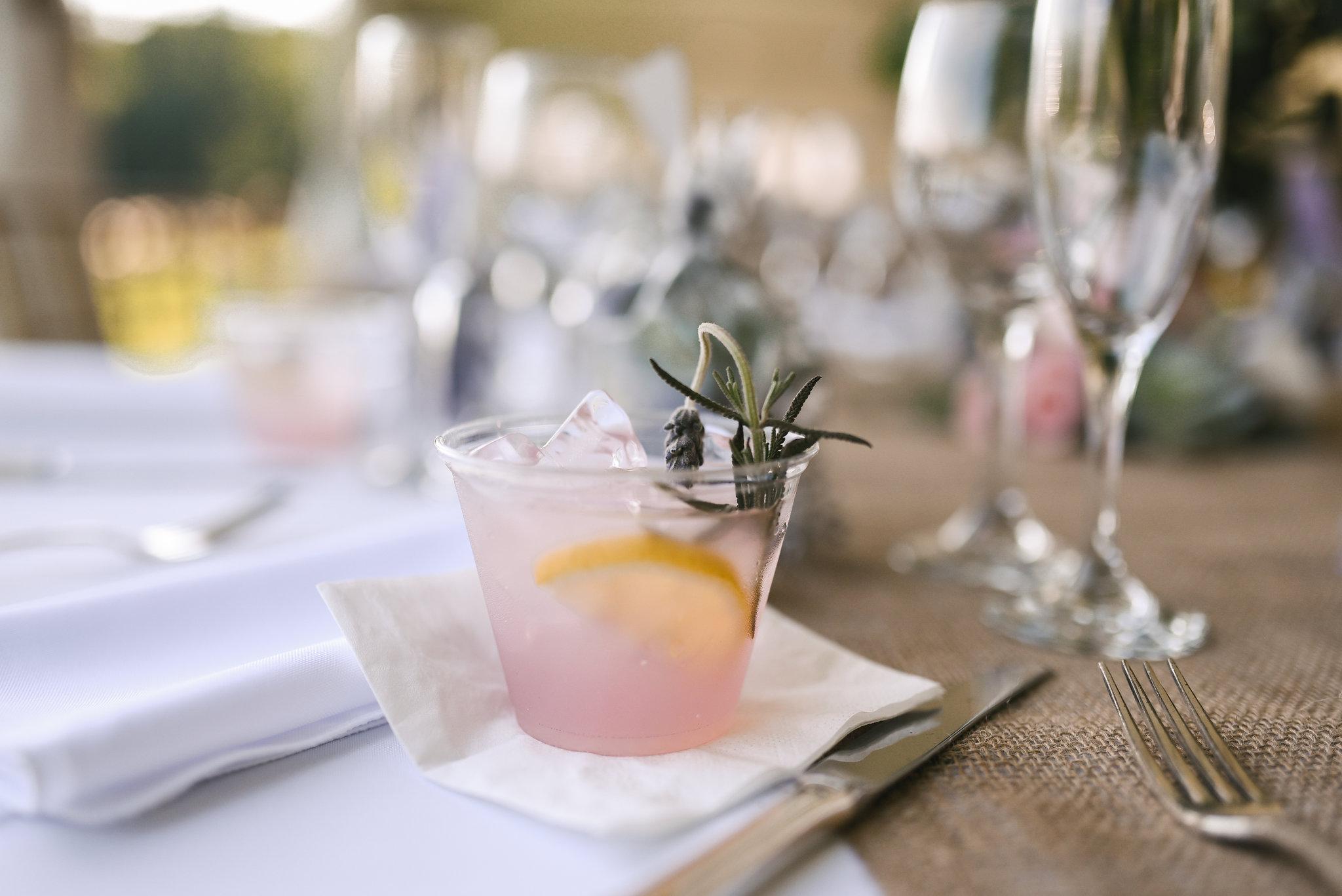 Maryland, Eastern Shore, Baltimore Wedding Photographer, Romantic, Boho, Backyard Wedding, Nature, Cocktails, Pink Mixed Drink at Reception