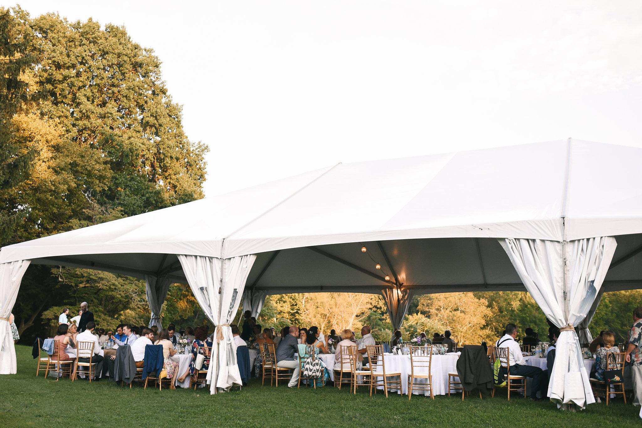 Maryland, Eastern Shore, Baltimore Wedding Photographer, Romantic, Boho, Backyard Wedding, Nature, Outdoor Reception Under White Tent, Wedding Guests Enjoying Reception