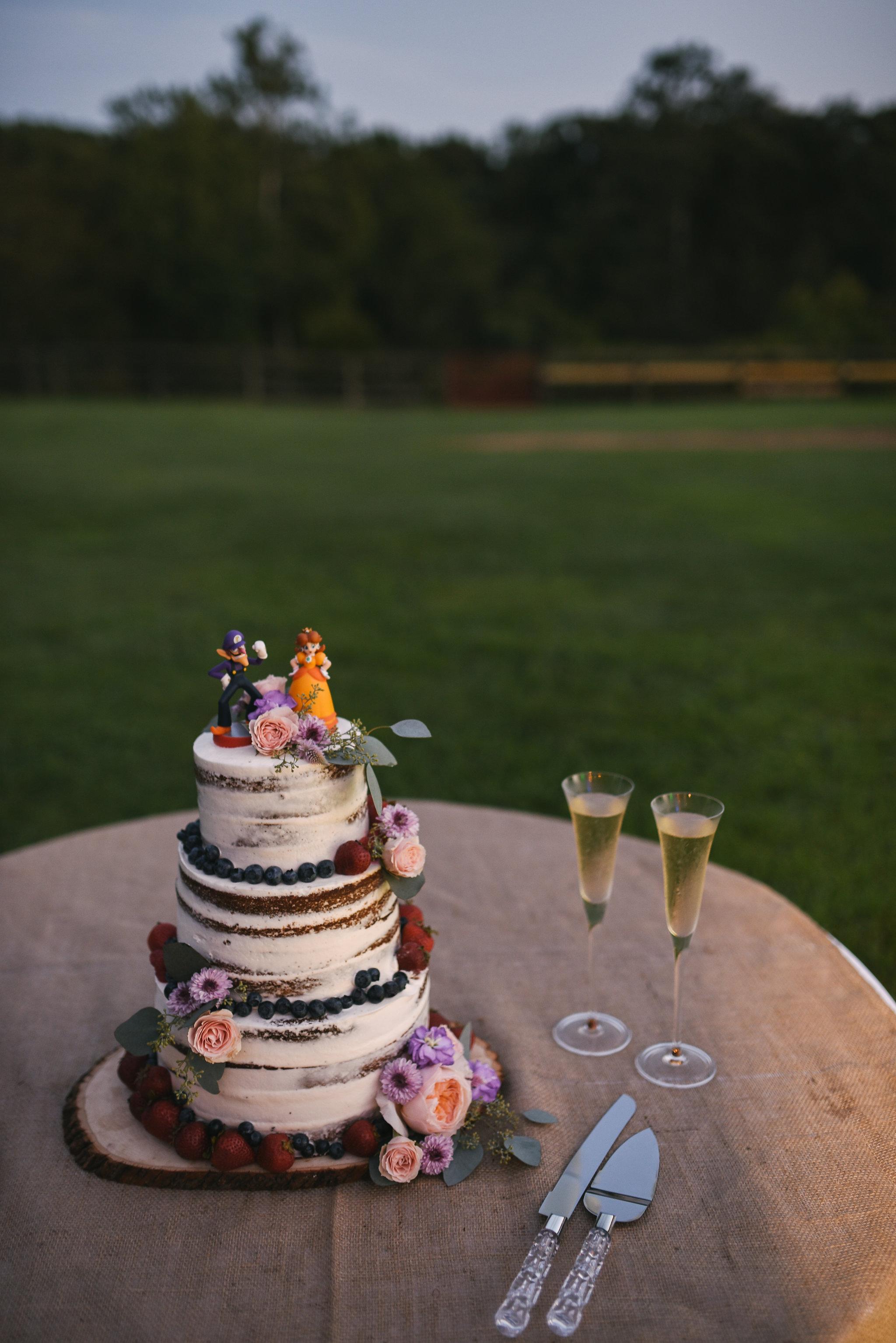 Maryland, Eastern Shore, Baltimore Wedding Photographer, Romantic, Boho, Backyard Wedding, Nature, Wedding Cake by Honey Hive Bakery, Mario Bros Cake Topper, Video Game Decor