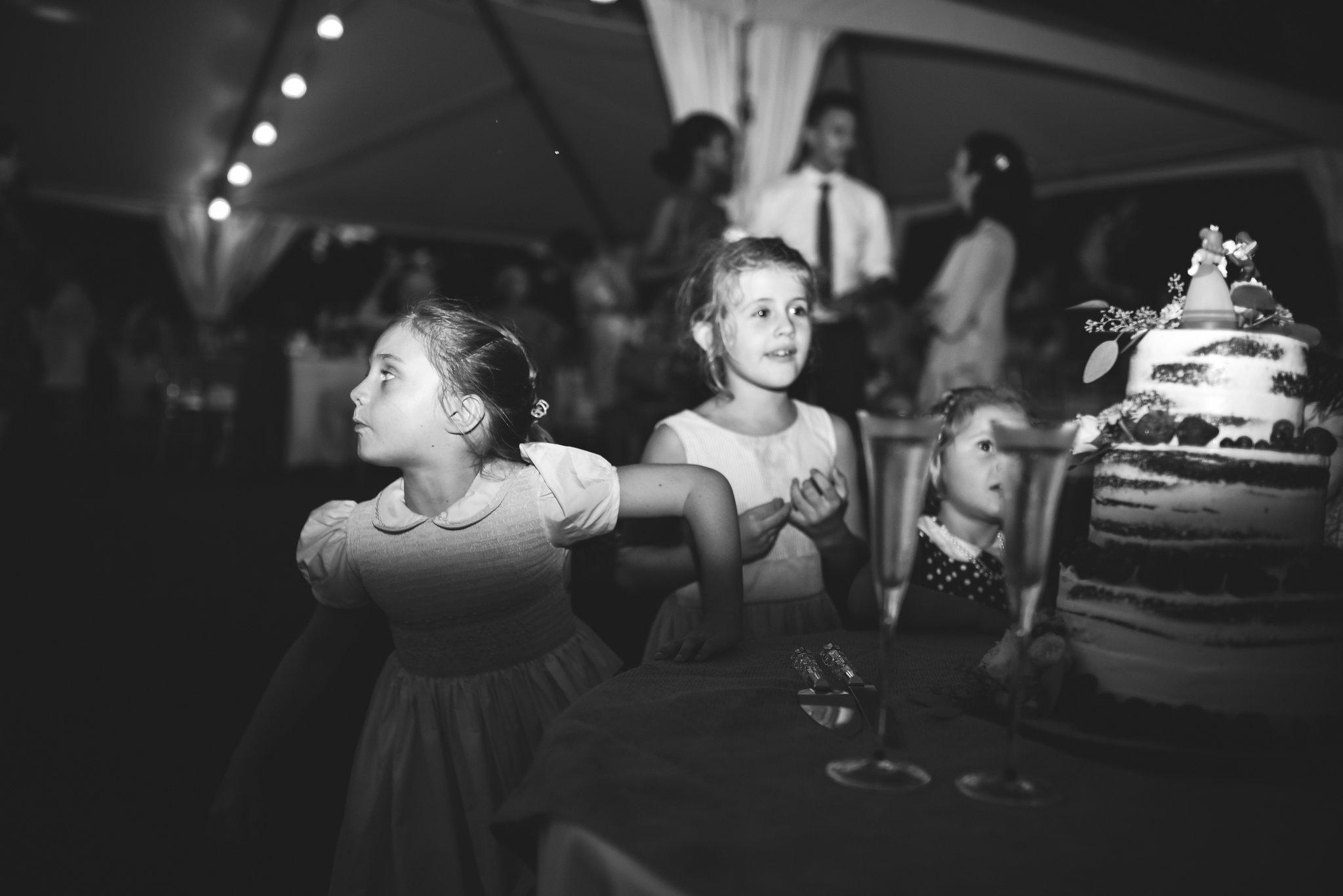 Maryland, Eastern Shore, Baltimore Wedding Photographer, Romantic, Boho, Backyard Wedding, Nature, Little Girls Having Fun at Reception, Black and White Photo