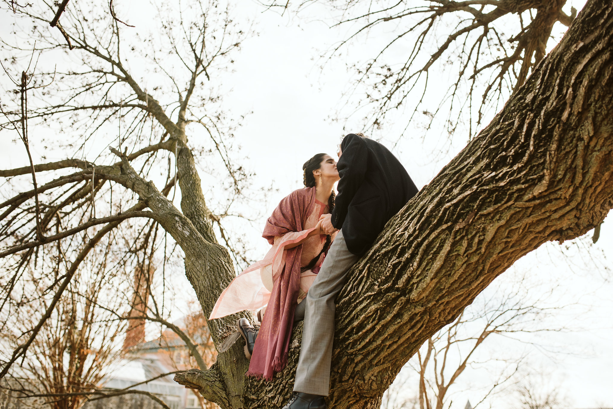 Elopement, Weekday Wedding, Towson, Rawlings Conservatory, Greenhouse, Baltimore Wedding Photographer, Indian American, Outdoor, Nature, Romantic, Garden, Whimsical, Bride and Groom, Kissing in a Tree
