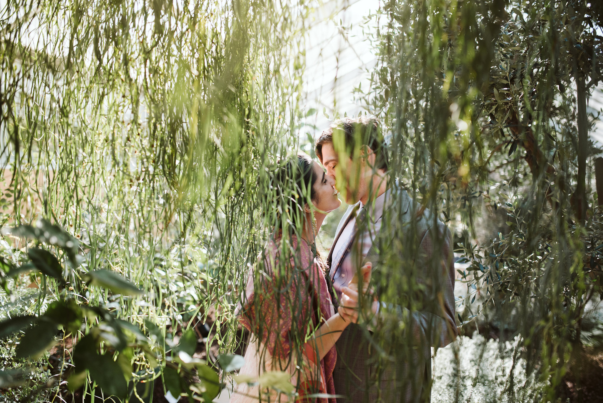 Elopement, Weekday Wedding, Rawlings Conservatory, Greenhouse, Baltimore Wedding Photographer, Outdoor, Nature, Romantic, Garden, Bride and Groom Kissing, Secluded Moments, Candid Photo