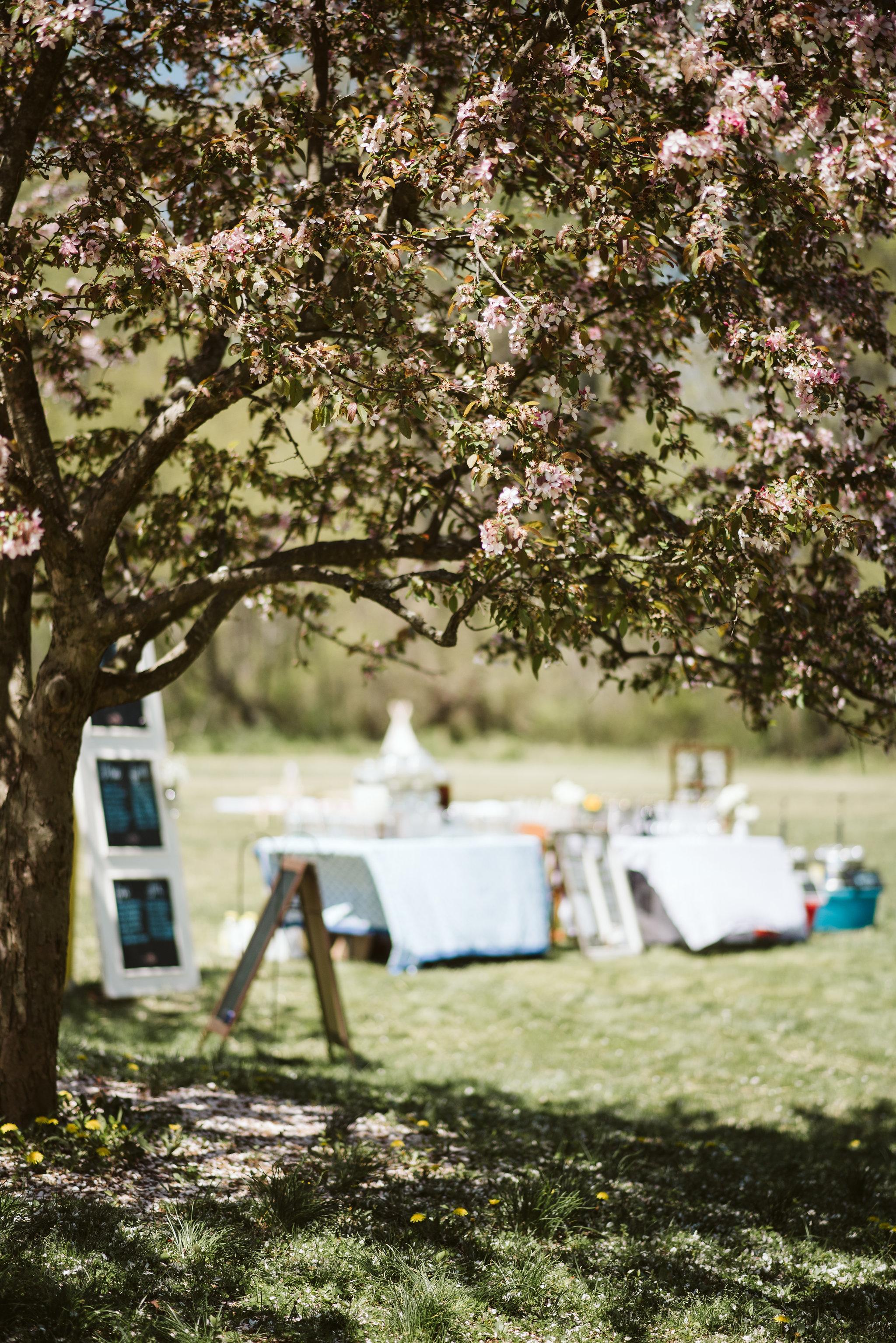 Spring Outdoor Wedding, Park, Baltimore Wedding Photographer, DIY, Classic, Upcycled, Garden Party, Romantic, Reception Decor, Homemade Bar and Signage