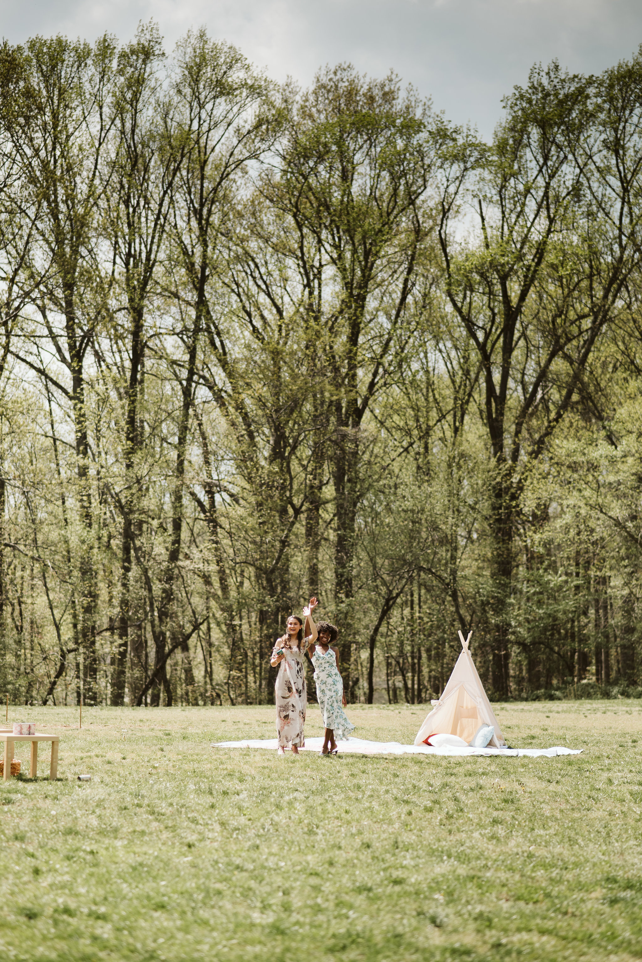 Spring Outdoor Wedding, Park, Baltimore Wedding Photographer, DIY, Classic, Upcycled, Garden Party, Romantic, Friends Dancing Outside, Hangout Area in the Grass