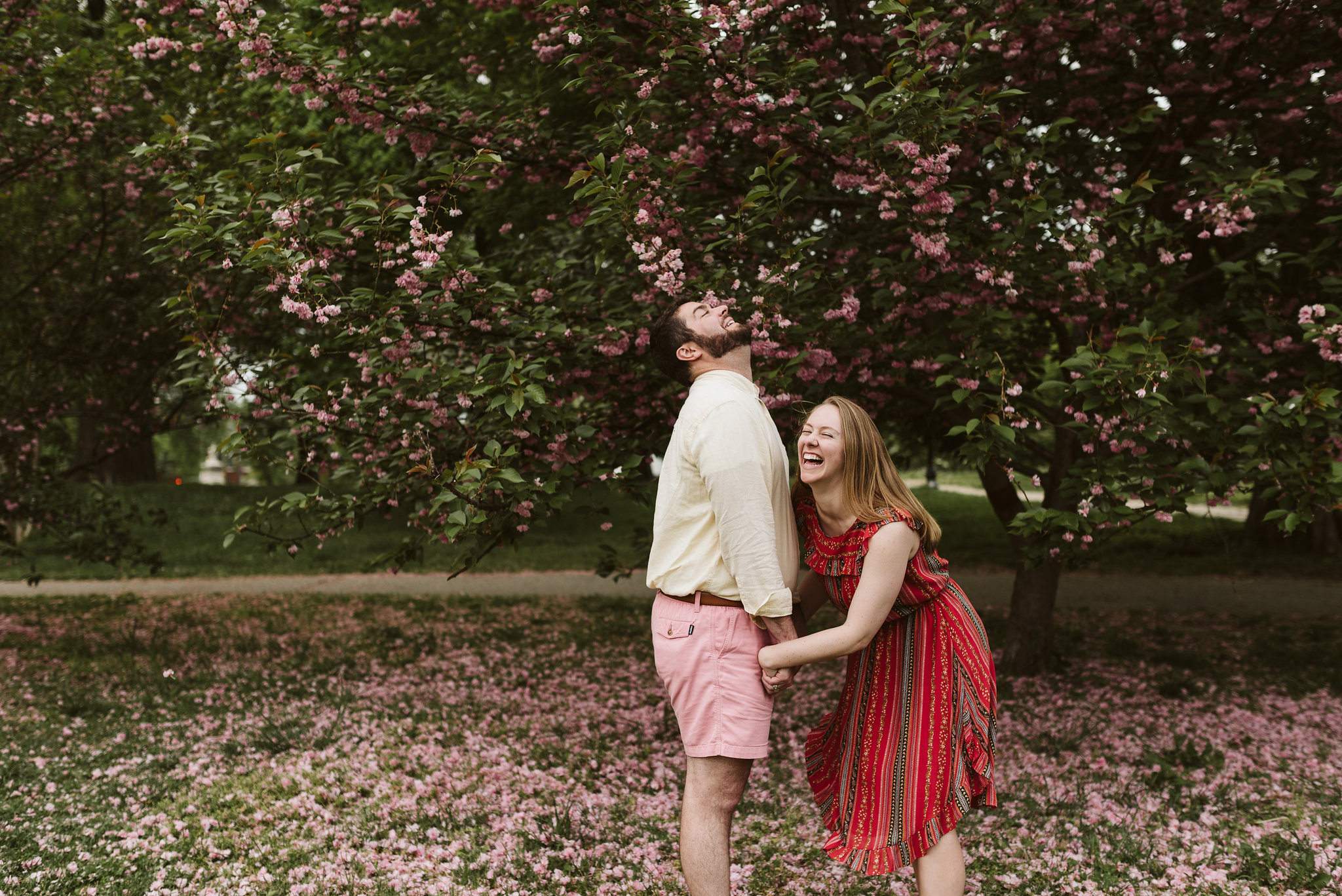 Engagement Photos, Patterson Park, Baltimore, Maryland Wedding Photographer, Casual, Fun, Nature, Bride and Groom Laughing Under a Tree, Crape Myrtle