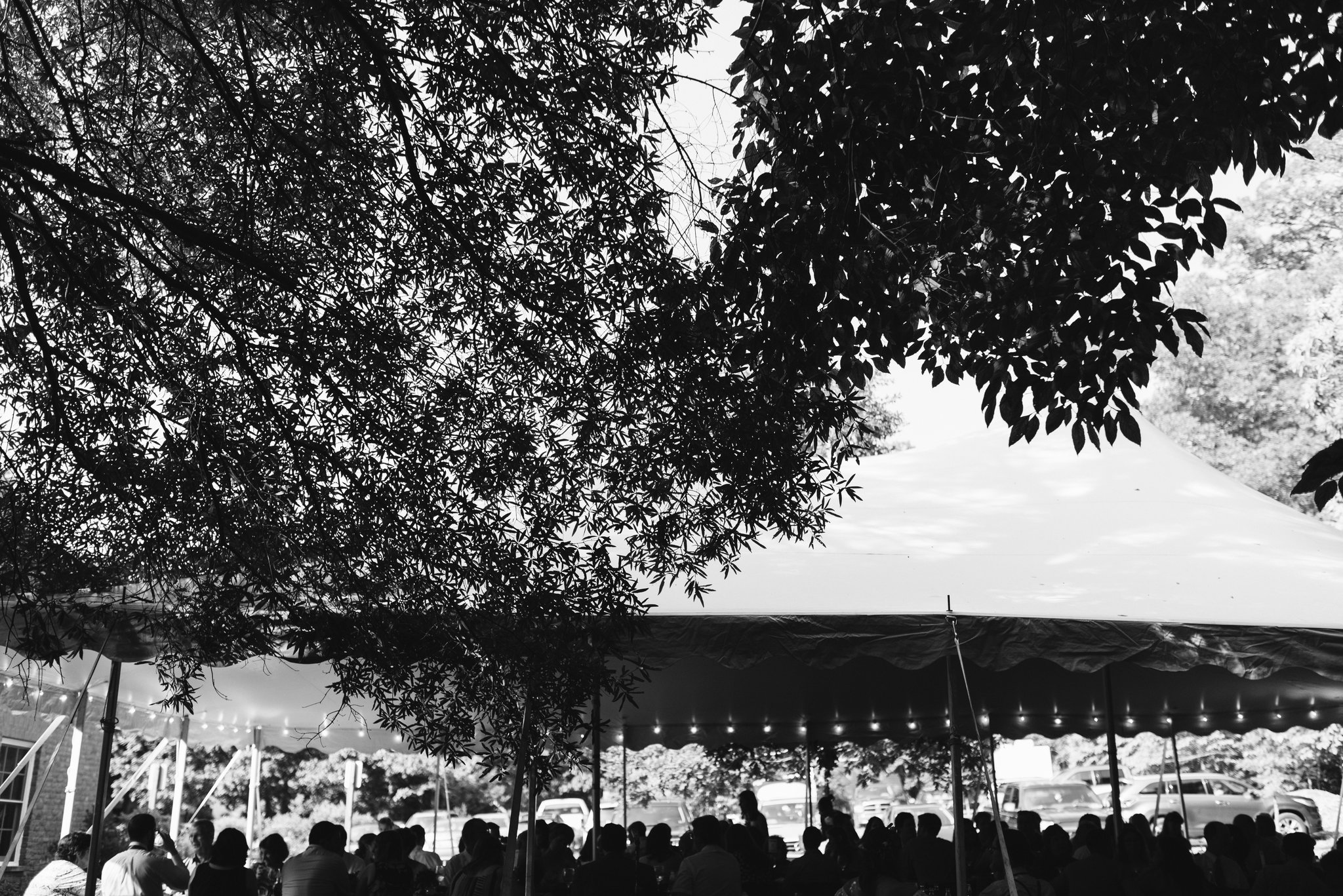 Annapolis, Quaker Wedding, Maryland Wedding Photographer, Intimate, Small Wedding, Vintage, DIY, Wedding Guests Under Tent, Outdoor Reception, Black and White Photo