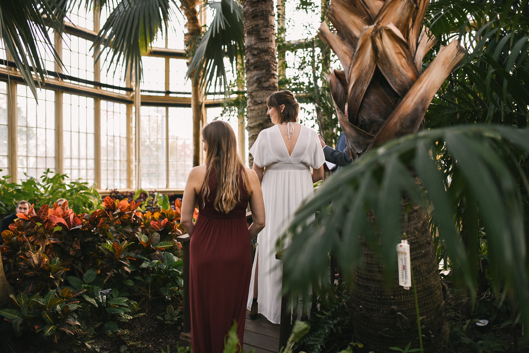 Rawlings Conservatory, Druid Hill Park, Intimate Wedding, Nature, Baltimore Wedding Photographer, Romantic, Classic, Bride and Bridesmaid Standing by Tropical Plants