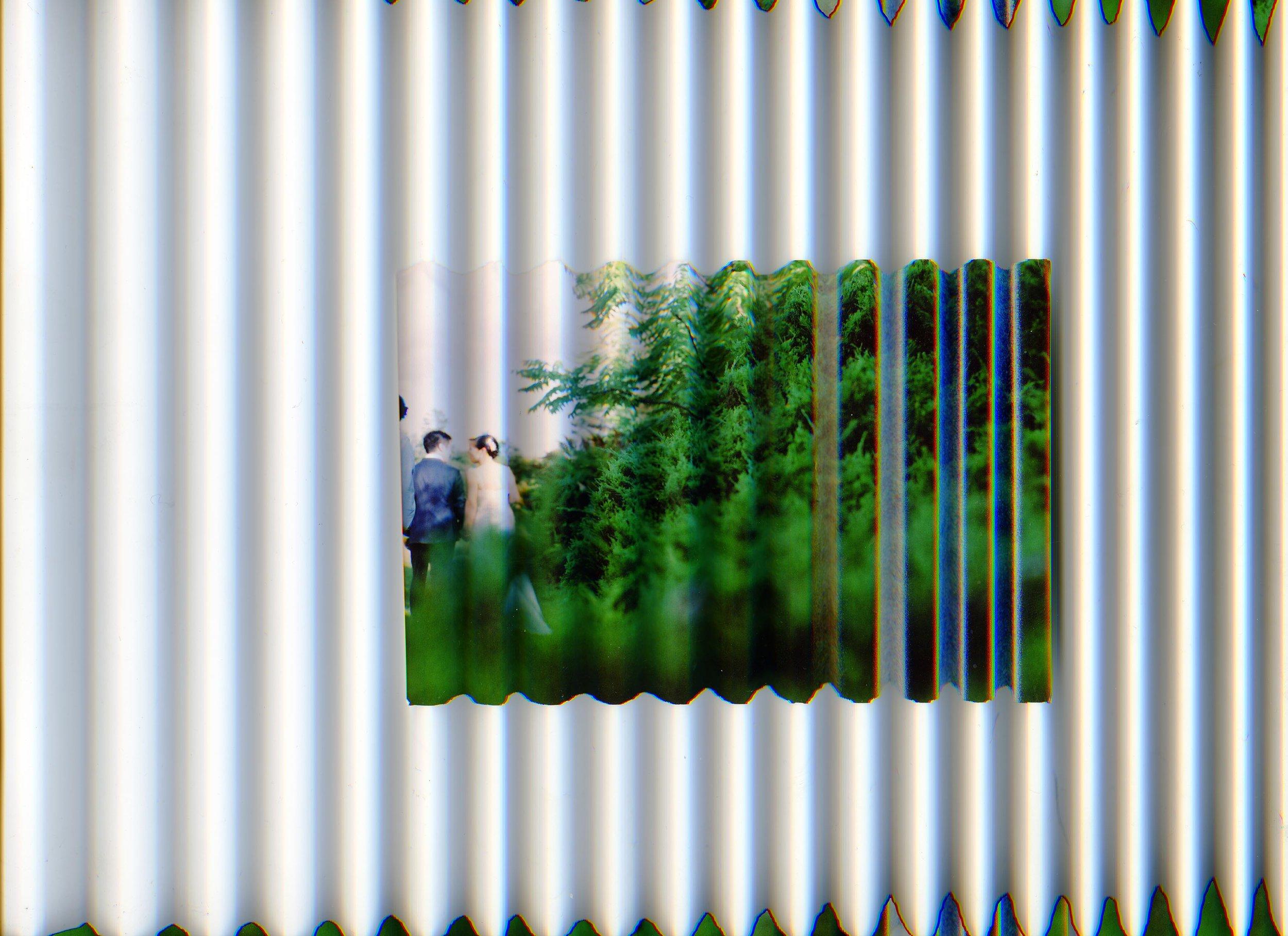 SJulien_W2.jpg