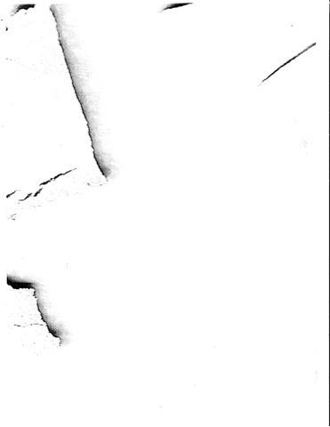 D-1-2.jpg