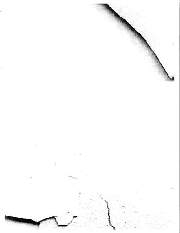 D-1-3.jpg