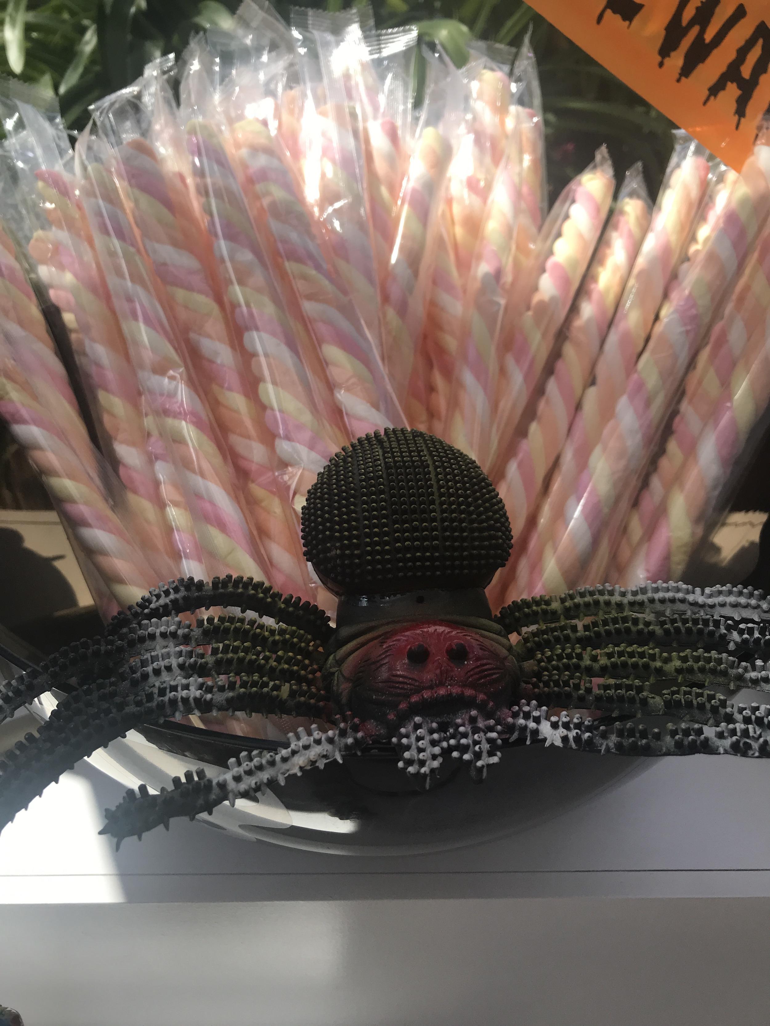 Halloween-Candy-Cart-Little-Lolly-Cart-Perth-4.JPG
