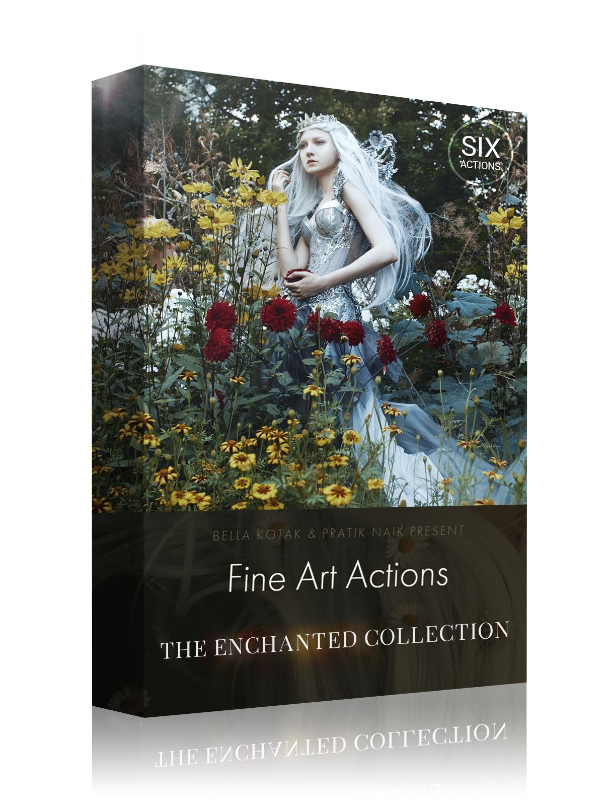 Box Design - The Enchanted Collection.jpg